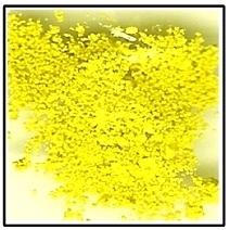Genuine Mayan Yellow Pigment